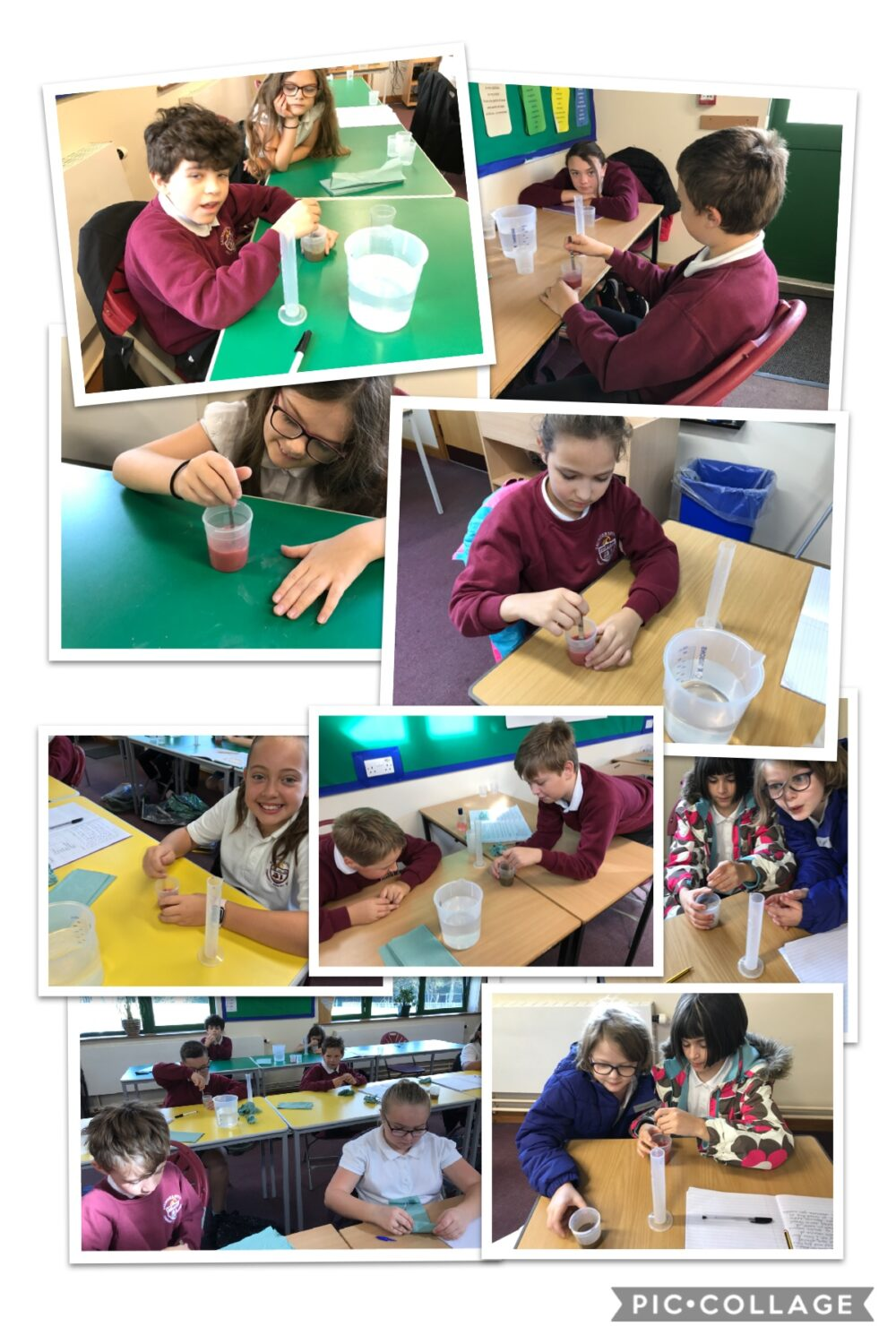 We are busy doing our Science Investigation here.